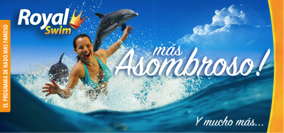 dolphin royal swim en cozumel 1