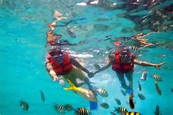 doble - wave runner safari y tour de snorkel 5