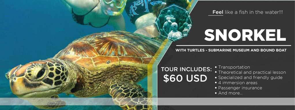 TOUR SNORKEL WITH TURTLES - SUBMARINE MUSEUM AND BOUND BOAT